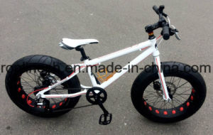 MTB BMX 20X4 Tire Kids Fat Bike/Child Fat Bicycle/Children Sand Bike/20X4 Fat Snow Bike/20in X 4 Fat Sand Bike/20X4fat All Terrain Bicycle/20X4 Toddler Fat Bike pictures & photos