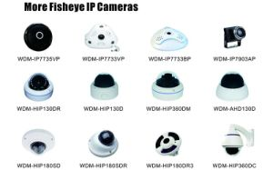 700tvl CCD 180 Degree Fish Eye Security Camera From CCTV Camera Suppliers pictures & photos