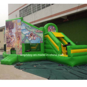 Madagascar Inflatable Bouncy Castle pictures & photos