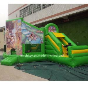 Madagascar Inflatable Bouncy Castle