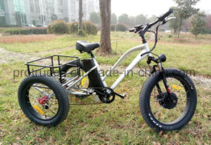 500W 3 Wheel Electric Bicycle with Cargo pictures & photos