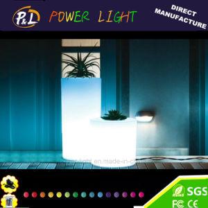 Bar Furniture Plastic Decoration LED Lighting Flower Pot pictures & photos