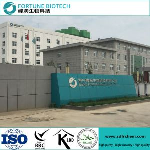 Brc Passed and Hot Sale Sodium CMC for Detergent Grade pictures & photos