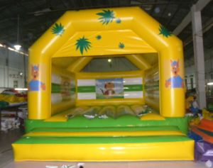 Inflatable Bouncer Combo/Inflatable Bouncer with Slide pictures & photos