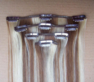 Remy Human Hair Clips Hair Extension Brazilian Virgin Hair