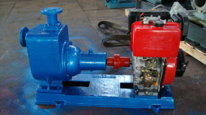 Cyz Centrifugal Cargo Diesel Oil Pump pictures & photos