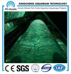 Cylindrical Acrylic Aquarium pictures & photos