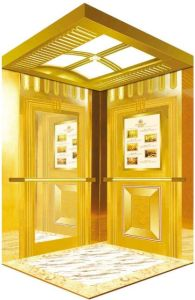 Mrl Professional Passenger Elevator with AC-Vvvf Drive (RLS-202) pictures & photos