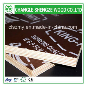 Professional Manufactured 18mm Logo Film Faced Plywood pictures & photos