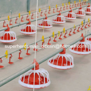 Full Set Automatic Poultry House Equipment for Broiler Rearing pictures & photos