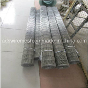 Flat Flex Conveyor Belt (1.27-2.34mm) pictures & photos