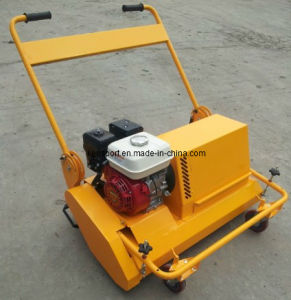 Turf Clean Machine for Artificial Pitch (TS800) pictures & photos