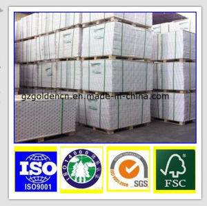 Grade a Coated Folding Box Duplex Fbb Paper Board with Grey Back pictures & photos