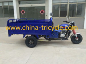 150cc Cargo Tricycle with High Rail of Box (TR-11) pictures & photos