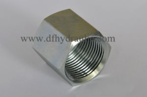 O-Ring Face Seal Tube Nut Ff0318 pictures & photos