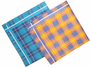 Woven Border Handkerchief/Cotton Handkerchief pictures & photos