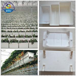 Hydroponic Planter Trough pictures & photos