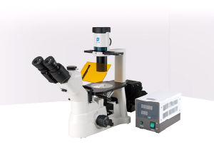 Ht-0354 Hiprove Brand Xd Series Fluorescence Biological Microscope pictures & photos
