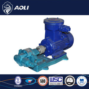 KCB18.3 Cast Iron Gear Oil Pump pictures & photos