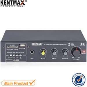 Real 100watts 2 Channel Audio PRO Power Amplifier pictures & photos