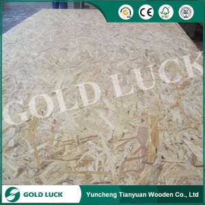 (Oriented Strand Board) OSB pictures & photos