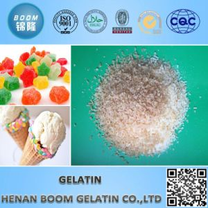 Gelatine Halal pictures & photos