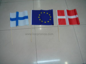 Public Campaign National Flag pictures & photos