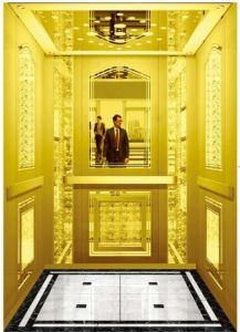 German Professional Passenger Elevator Without Machine Room (RLS-225) pictures & photos