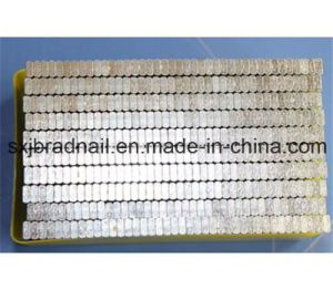 China Suppliers Hot Sell St Brad Nails pictures & photos