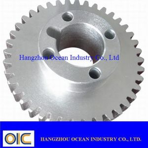 Standard and Special Spur Gear pictures & photos
