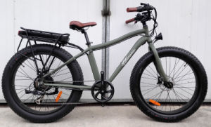 Fat Tire Mountain Bicycle with Rear Rack pictures & photos