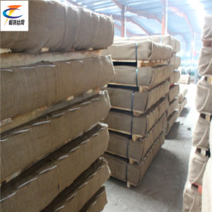 Good Supplier Crimped Wire Mesh pictures & photos