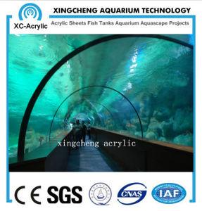 Customized Large Transparent UV PMMA Tunnel Oceanrium Manufacturer pictures & photos