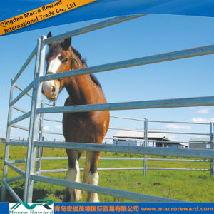 AS/NZS Steel Cattle Panel Round Yard System pictures & photos