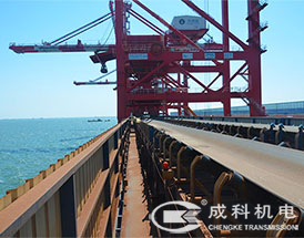 Port Material Handling Belt Conveyor pictures & photos
