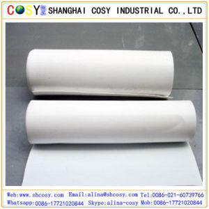 Hot Sale Glossy PP Synthetic Paper with High Quality for Printing pictures & photos