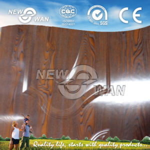 High Quality Melamine Faced Door Skin (NMD-0020) pictures & photos