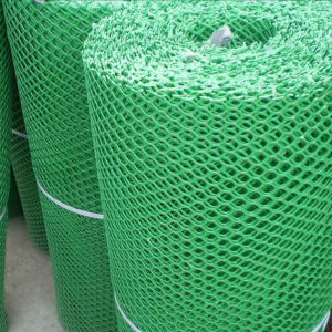 Plastic Poultry Flat Mesh/Rigid Plastic Plain Netting pictures & photos