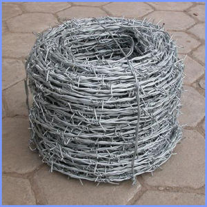 Galvanized Iron Barbed Wire From Guangzhou Supplier pictures & photos