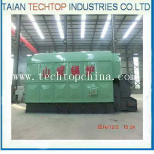 Taishan Dzl Best Price Boiler for Solid Fuels (DZL1/4-0.7/1.25-AII) pictures & photos
