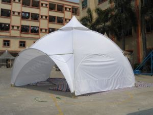 6m Steel Frame, Spider Tent, Beach Tent, Garden Tent, Event Tent pictures & photos