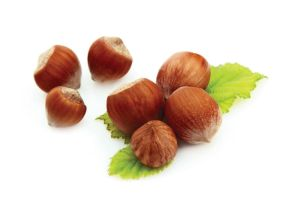 Fresh Chestnut with Good Price pictures & photos