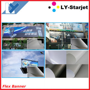 Laminated Printable Banner (Flex Banner) pictures & photos