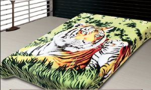 Bedding Blanket Animail Raschel Blanket Printed Blanket Korean Blanket