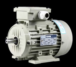 Ye2 Series Aluminum-Housing (MS Series) Three Phase Asynchronous Electric Induction Motor pictures & photos