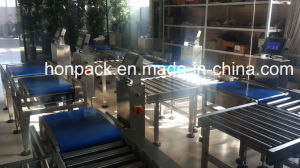 Hcw7040 Checkweigher pictures & photos
