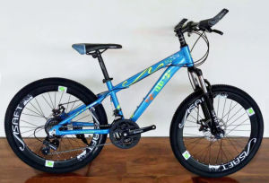 Carboon Steel 21 Soeed Mountain Bike (MTB-026) pictures & photos