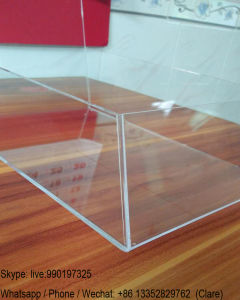 Table Clear Perspex Office Brochure Holders Stand pictures & photos