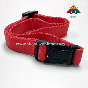 25mm Red Nylon Webbing Dog Collar pictures & photos