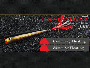 Plastic Fishing Lure (Cross Popper 65 85mm Floating) pictures & photos